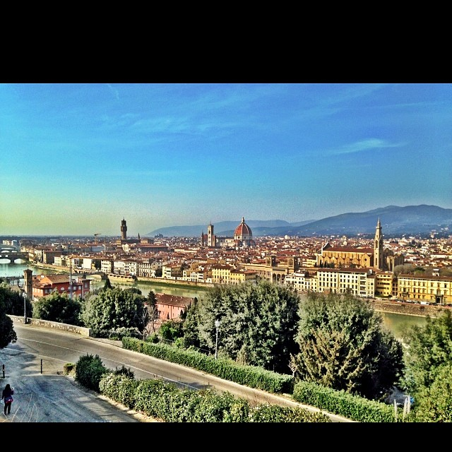 Florence Skyline - D